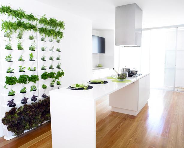 jardin-vertical-en-la-cocina